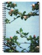 Spring Blossoms 2.0 Spiral Notebook
