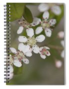 Spring Blossoms Spiral Notebook