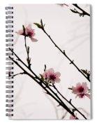 Spring Blossoms Spiral Notebook
