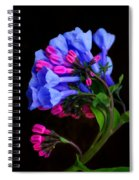 Spring Bluebells Spiral Notebook