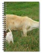 Spring Born Spiral Notebook