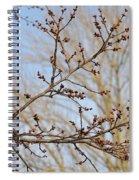 Spring Bound Spiral Notebook