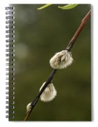 Spring Branches And Buds Spiral Notebook