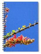 Spring Buds 32815 Spiral Notebook