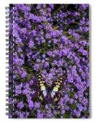 Spring Butterfly Spiral Notebook