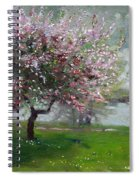 Spring By The River Spiral Notebook