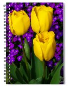 Spring Colours Spiral Notebook