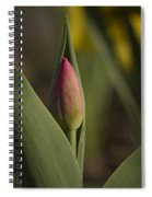 Spring Comes Softly Spiral Notebook