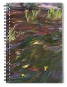 Spring Creek In Oak Canyon Park Spiral Notebook