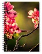 Spring Dance Spiral Notebook