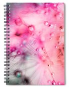 Spring - Dandelion With Water Droplets Abstract Spiral Notebook