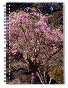 Spring Day In Park Spiral Notebook