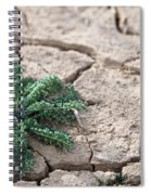 Breaking Of The Drought Spiral Notebook