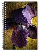 Spring Finery  Spiral Notebook