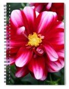 Spring Flower 1 Spiral Notebook