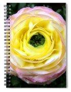 Spring Flower 3 Spiral Notebook