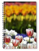 Spring Flowers 11 Spiral Notebook