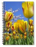 Spring Flowers 12 Spiral Notebook