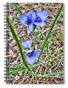 Spring Flowers 3 Spiral Notebook