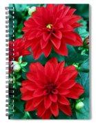 Spring Flowers 5 Spiral Notebook