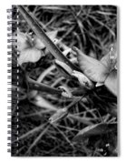 Spring Flowers Bw Spiral Notebook