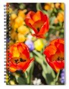 Spring Flowers No. 4 Spiral Notebook