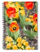 Spring Flowers No. 6 Spiral Notebook