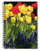 Spring Garden Sunshine Square Spiral Notebook