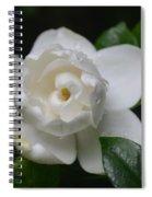 Spring Gardenia 2013 Spiral Notebook