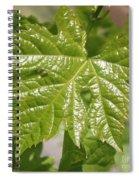 Spring Grape Leaf Spiral Notebook
