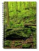 Spring Green  Spiral Notebook