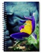 Spring Handout Spiral Notebook