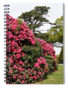 Spring In Muckross Garden - Ireland Spiral Notebook