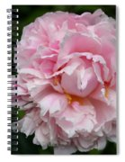 Spring In Pink Spiral Notebook