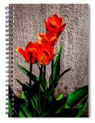 Spring In The City Spiral Notebook