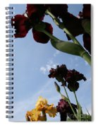 Spring Iris Skies Spiral Notebook