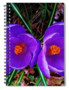 Spring Is Blooming Spiral Notebook