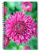 Spring It On Spiral Notebook