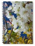 Spring Life In Still-life Spiral Notebook