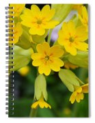 Spring Lyric Spiral Notebook