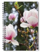 Spring Magnolia Tree Flowers Pink White Spiral Notebook
