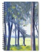 Spring Marsh From Deerfield Road Spiral Notebook