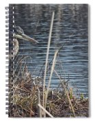 Spring Morning At The Marsh Spiral Notebook