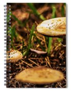 Spring Mushrooms Spiral Notebook