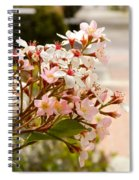 Spring On The Street Spiral Notebook