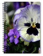 Spring Pansy Flower Spiral Notebook