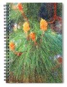 Spring Pine Spiral Notebook