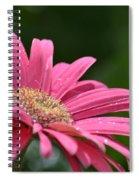 Spring Pink 2014 Spiral Notebook