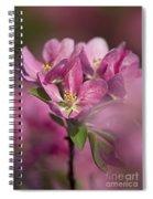Spring Pink... Spiral Notebook