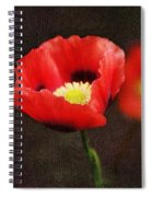 Spring Poppies Spiral Notebook